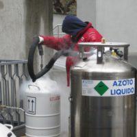 azoto-liquido-disinfestazioni-cimici-SIADD
