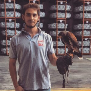 birds-control-rapaci-SIADD-Torino