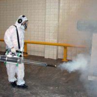 fumigazione-disinfestazione-SIADD-Torino