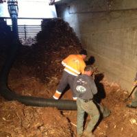 pulizia-bonifica-sanificazione-Torino