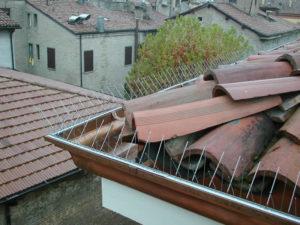 punte-dissuasori-tetto-allontanamento-piccioni